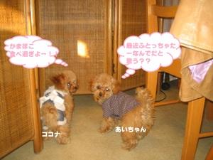 2011_0107_160511img_0142_2