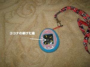 2011_0111_100442img_0001