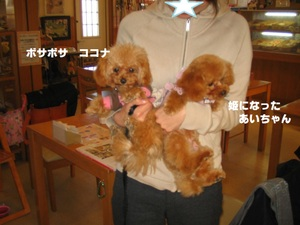 2011_0114_143536img_0059