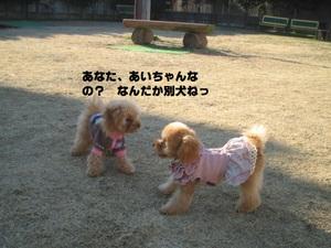 2011_0114_145102img_0080