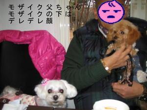 2011_0123_162822img_0119
