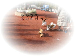 2011_0129_141241img_0051