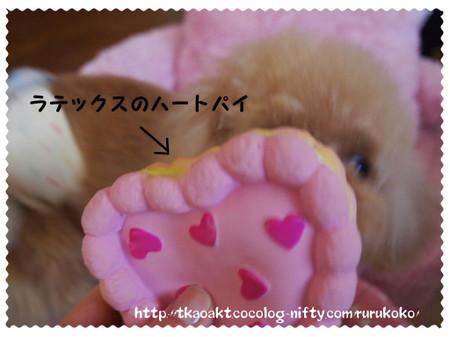 2012_0510_153539p5101938