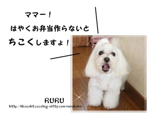 Ruru3